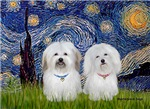 STARRY NIGHT<br>With 2 Cotons