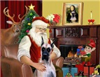 SANTA AT HOME<br>With Hie Fawn Great Dane (f10)