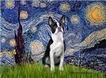 STARRY NIGHT<br>& Boston Terrier