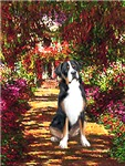 THE PATH<br>Greater Swiss Mountain Dog