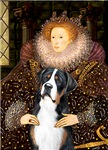 QUEEN ELIZABETH I<br>Greater Swiss Mountain Dog