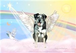 CATAHOULA LEOPARD DOG ANGEL IN CLOUDS