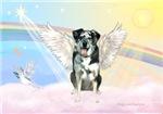 CATAHOULA LEOPARD DOG ANGEL IN CLOUDS