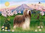 FUJI BLOSSOMS<br>& Bearded Collie (brown)