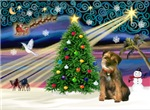 CHRISTMAS MAGIC<br>& Border Terrier