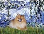 LILIES #6<br>& Pomeranian #4