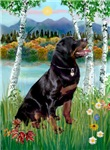 IN THE BIRCHES<br>& Rottweiler #6