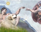 CREATION OF MAN <br>& Great Pyrenees