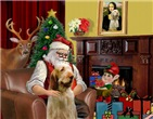 SANTA AT HOME<br>& Italian Spinone #4