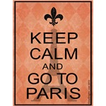 Keep Calm and Go To Paris - Orange Argyle