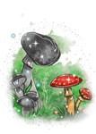 Tivona the Toadstool and Mushroom Fairy