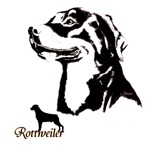 Rottweiler 2 designs+ holiday designs