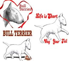 the bull terrier dog, bull terriers