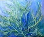 Aquatic Fern