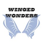 Winged Wonders