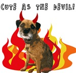 Border Terriers: Cute as the Devil!