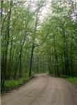 Lead Mine Road