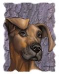Dog Art by Susan Van Camp