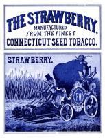 Strawberry no.5