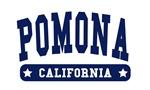 Pomona College Style