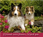 If friends were flowers, I'd pick you