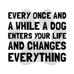 Dog Changes Everything