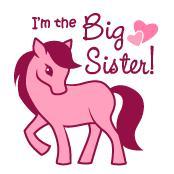 Big Sister - Pink Pony