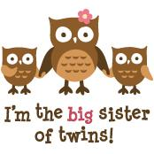 Big Sister of Twins - Mod Owl