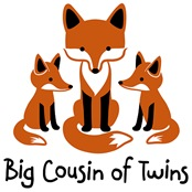 Big Cousin of twins - Mod Fox