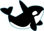 Orca (killer) Whale