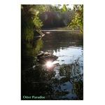 Otter Paradise