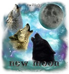 Twilight new moon Wolves Misty Shine 01