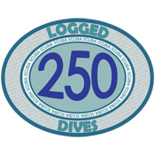 250 Logged Dives