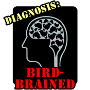 Diagnosis: Bird-Brained