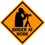 Birder at Work