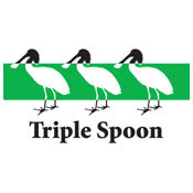 Triple Spoon