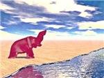 Desert Elephant Quest For Water