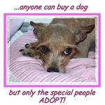 Adopters ONLY!