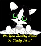 Do You Really Have To Study Now? (cat for dark clo