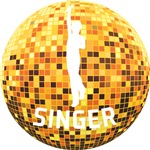 Disco Ball Singer