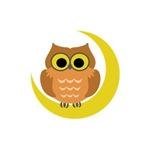 MINI OWL ON MOON