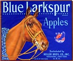 Blue Larkspur Apples