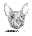 Samauri