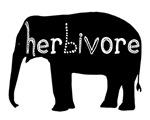 Herbivore - Elephant