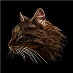 Domestic Cat Profile