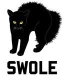 Swole Cat is Kitten Swole