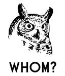 Hoo Who Whom Grammar Owl