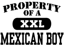 Property of a Mexican Boy t-shirt