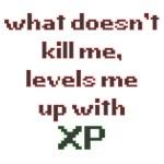 level xp