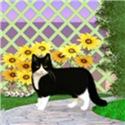 Tuxedo Cat in the Garden